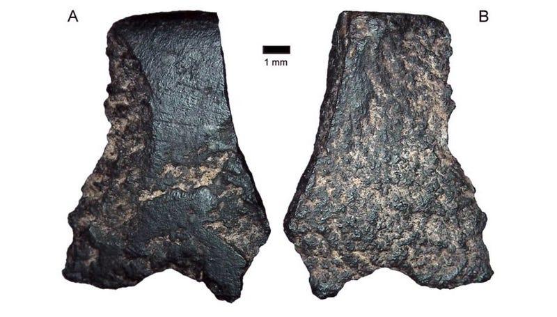 Foto: Australian Archaeology