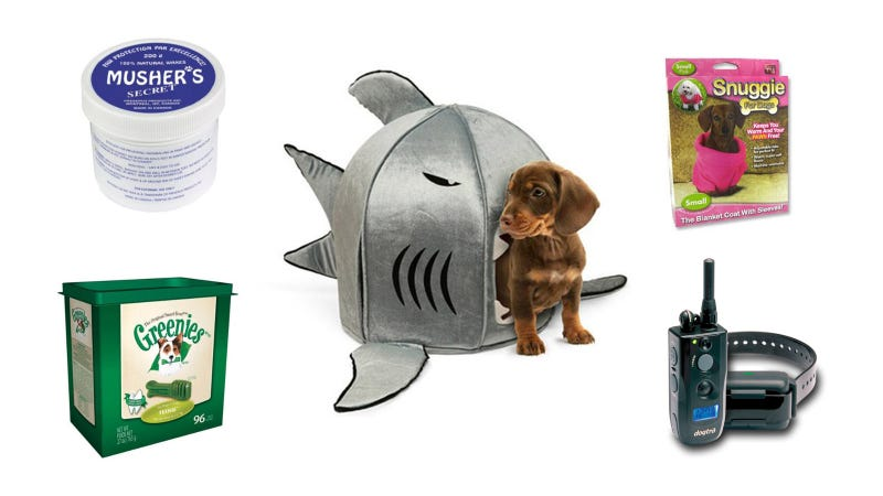 fetching gifts for loyal dog owners
