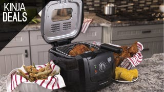 This Countertop Deep Fryer is Just $30 Today