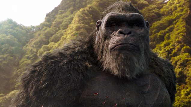 Godzilla vs Kong s Adam Wingard Could Return to the Monsterverse for More Monkey Business