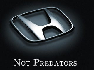 Illustration for article titled Honda Urges Dealers Not To Be Dickish About Toyota Recalls
