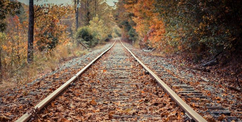 Illustration for article titled Así quitan las hojas de las vías de tren en Holanda: con láser