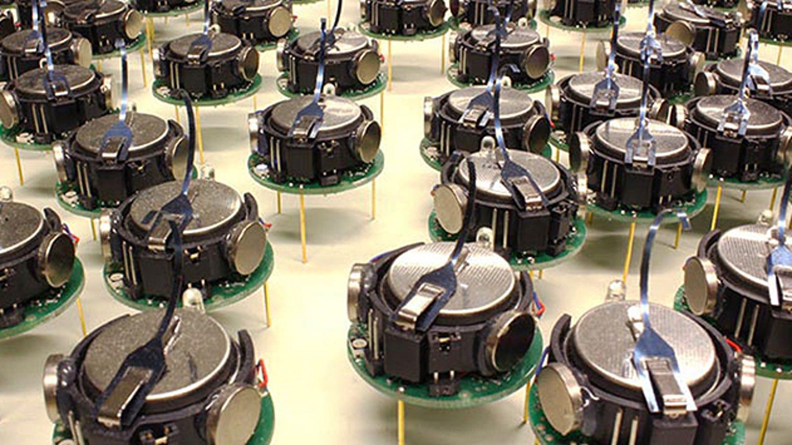 Científicos de Harvard crean un enjambre cooperativo de 1.000 robots