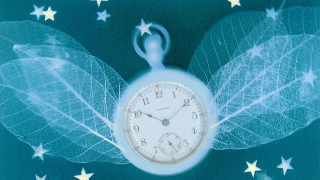 Here s How The Body Keeps Time, Thanks to This Year s Nobel Winning Science
