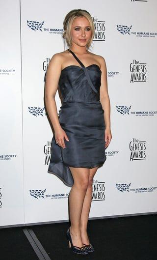 Illustration for article titled Who Designed Hayden's Dress? It's Lovely!