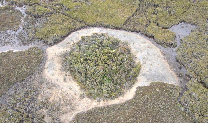 Área donde fueron encontradas las evidencias. Nature