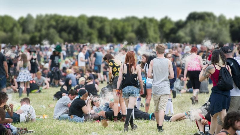Wristbands allow festivalgoers to return to the empty field after a trip to the parking lot to retrieve more MDMA, mephedrone, 2-DPMP, Benzo Fury, Adderall, or synthetic cannabinoids.