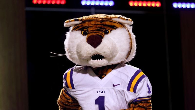 Illustration for article titled Patriots Draft Pat Patriot's Successor With Third-Round Pick Of Sophomore LSU Mascot