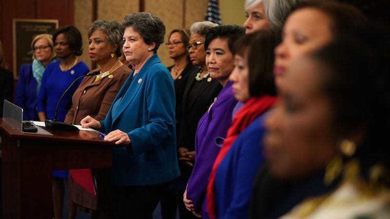 Members of the Democratic Women's Working Group. Image via Getty.