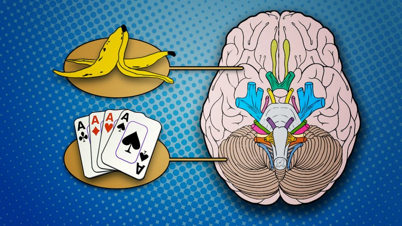 Illustration for article titled Tricks Your Left Brain is Playing On You (And What You Can Do About It)