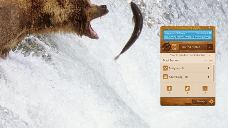 Illustration for article titled TunnelBear Adds Privacy Protection, Always On Security for PC and Mac