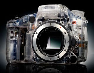 Illustration for article titled I Wish This Translucent Sony DSLR Was Real