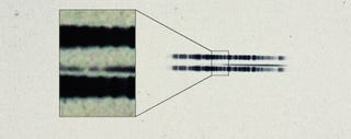 """1917 photographic plate spectrum of van Maanen's star from the Carnegie Observatories' archive, showing evidence for """"pollution"""" caused by rocky debris. Image: Carnegie Institution for Science"""