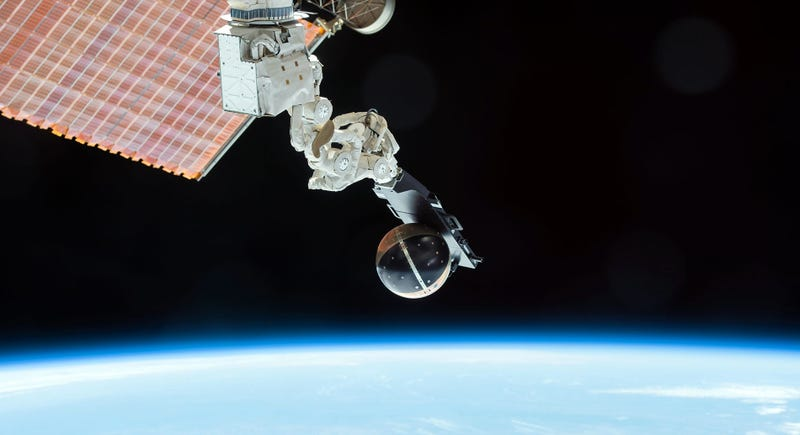 Illustration for article titled Los increíbles experimentos que acaban de regresar del espacio