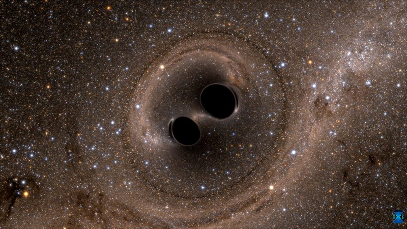 Computer simulation of two black holes merging into one. Image: The SXS (Simulating eXtreme Spacetimes) Project