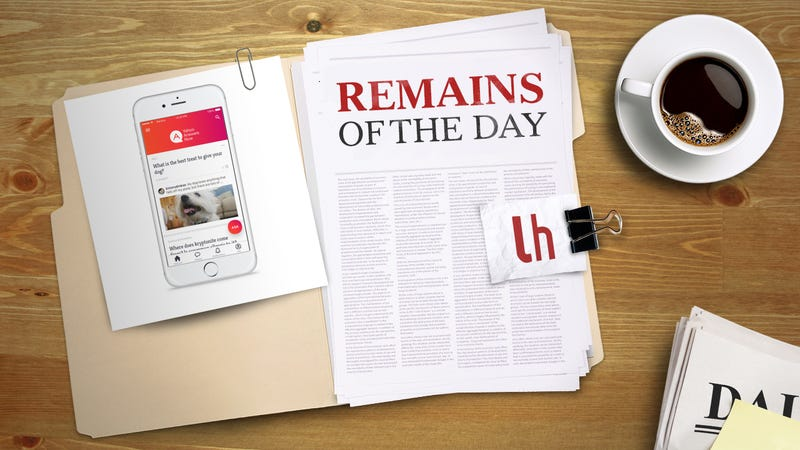Illustration for article titled Remains of the Day: Yahoo Answers Arrives on iOS