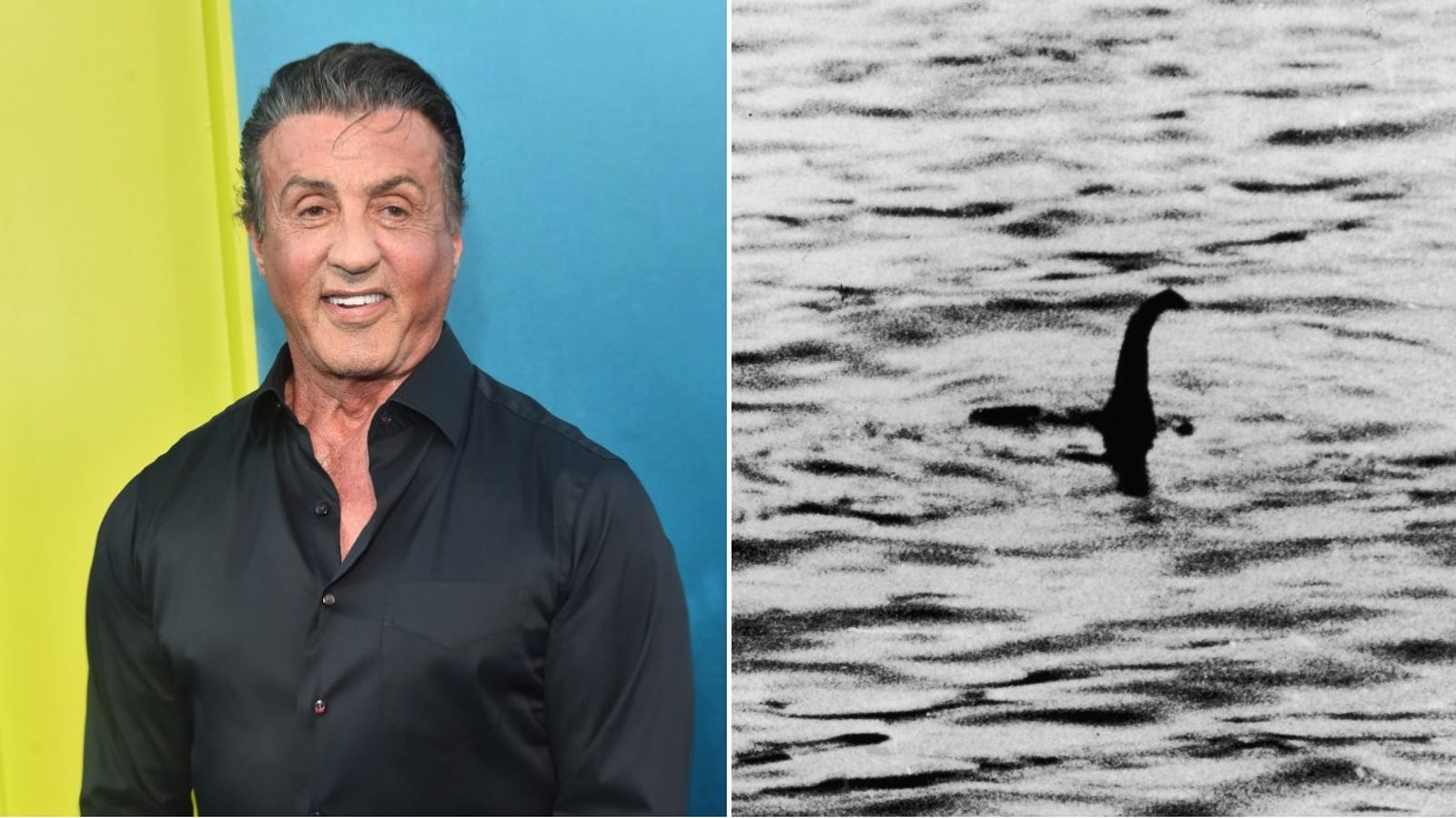 Sylvester Stallone has been trying to make a movie where Rambo fights a monster