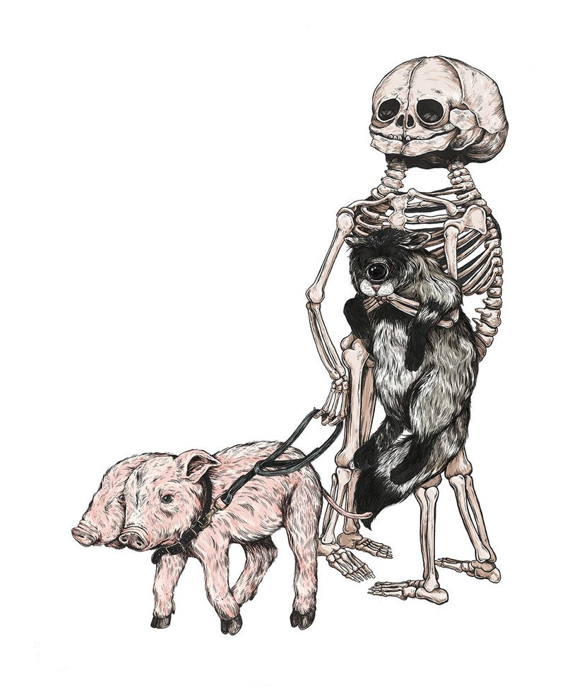 Illustration for article titled Beautiful art celebrates anatomical oddities