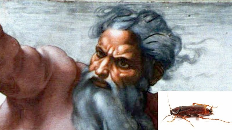 God said that when He thinks of how far cockroaches have come, He swells with pride.