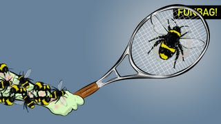 Illustration for article titled Do Not Fuck With Bees