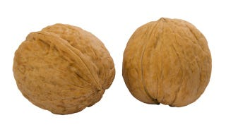 Illustration for article titled Today's sexy body hack: eat walnuts to boost sperm health
