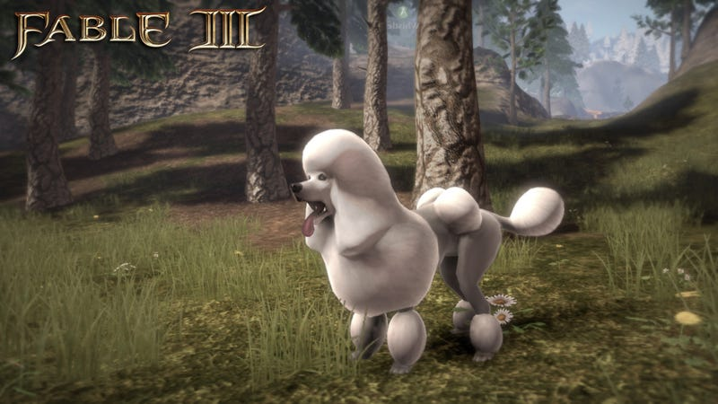 Illustration for article titled Lionhead Puts The Poodle in Fable III