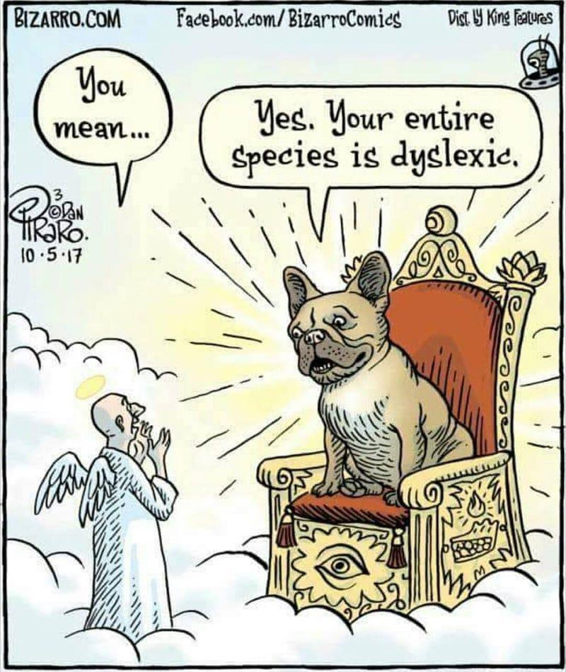 Illustration for article titled Praise Dog