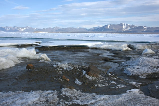 New Northernmost Island Discovered Above Greenland