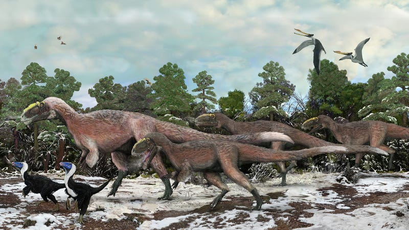Illustration for article titled New Evidence Suggests Tyrannosaurs Hunted In Packs
