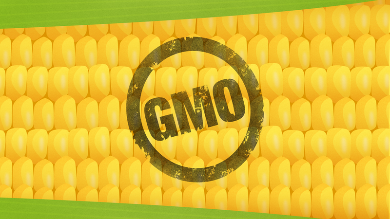 Illustration for article titled GMO Labels Won't Make Your Food Safer