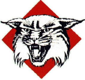 Illustration for article titled Davidson Wildcats