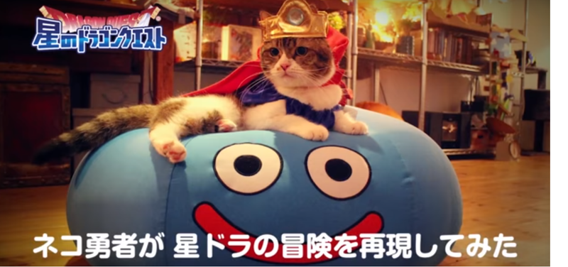 Illustration for article titled Cats On A Dragon Quest Adventure Is Everything