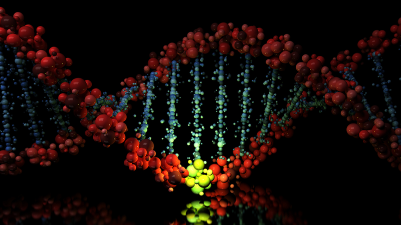"""Illustration for article titled New Technique Allows Bioengineers To """"Reprogram"""" Genetic Code"""