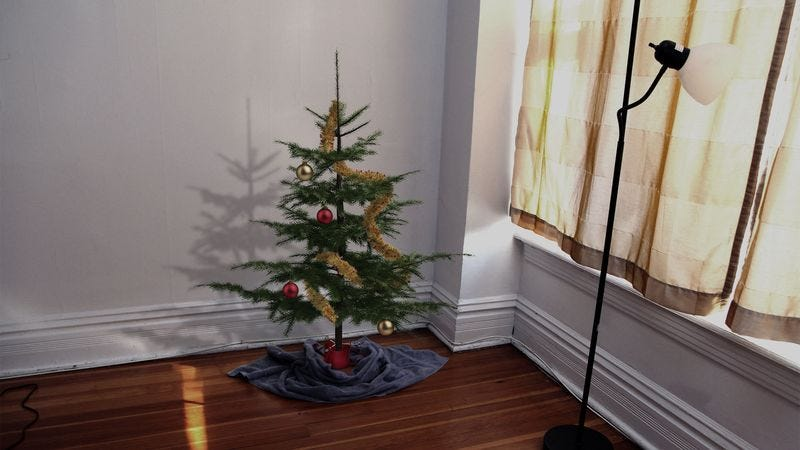 Illustration for article titled 3-Foot-Tall Christmas Tree Really Completes Incredibly Depressing Apartment