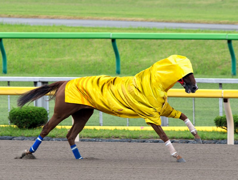 Illustration for article titled Horse Sprinting Around Track In Rubber Raincoat Trying To Make Weight