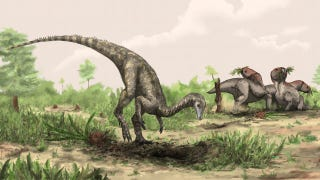 Illustration for article titled Meet the dinosaur so ancient it may be a missing link