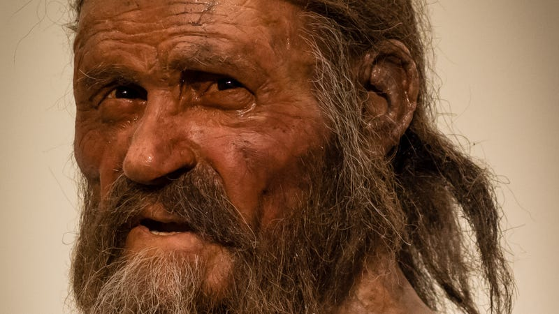Reconstruction of Ötzi the Iceman.