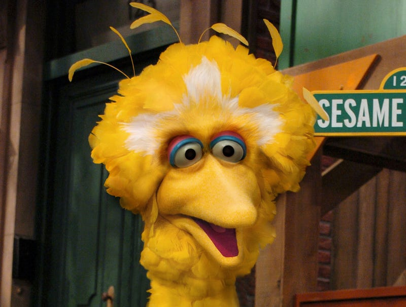 Illustration for article titled Gaunt, Hollow-Eyed Big Bird Enters Sixth Day Of Hunger Strike Against Proposed Trump Budget