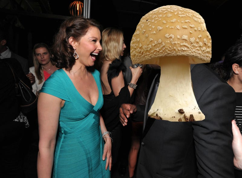 Illustration for article titled Ashley Judd Went On A Cool Hike And All She Saw Was Some Mushrooms