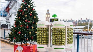 Illustration for article titled This Christmas Tree Is Lit by 1,000 Brussels Sprouts