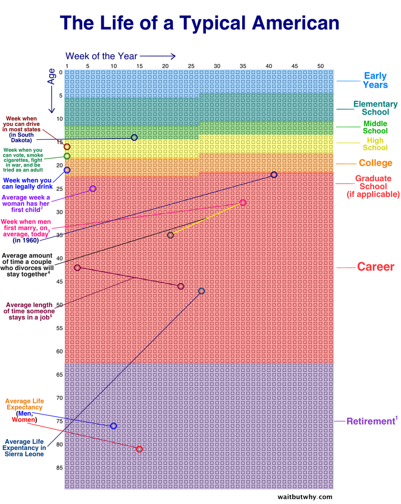 Illustration for article titled Chart Reveals the Events in An Average American's Life, Week by Week