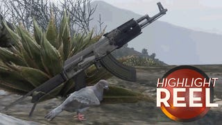 Don't Mess With GTA V Pigeon And His Assault Rifle
