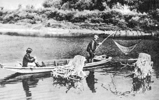 Illustration for article titled Mindszent és Csongrád között beltiltották a pecát és a halászatot