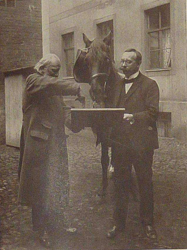 Lo llamaban clever Hans: el caballo matemático