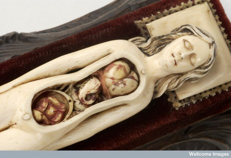 Illustration for article titled This Tiny Doll is Anatomically Correct All The Way In