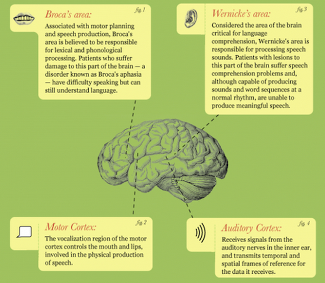What Are Some Of The Coolest Psychology Or Body Language Facts You Know? 1
