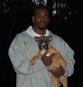 Illustration for article titled What Kind Of Dog Will Michael Vick Get?