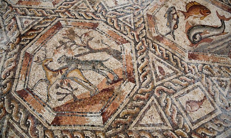 Illustration for article titled Descubren un mosaico de más de 1.700 años escondido debajo de las calles de Israel
