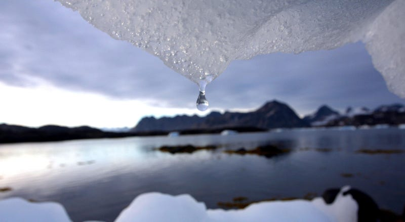 """Cómo el derretimiento del permafrost en el Ártico podría """"despertar"""" virus masivos de hace miles de años"""