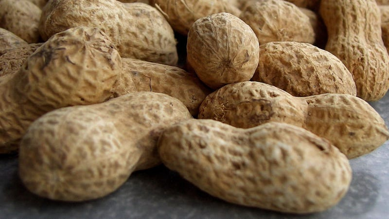 The First Peanut Allergy Drug Might Be Approved Soon—but Not Without Controversy